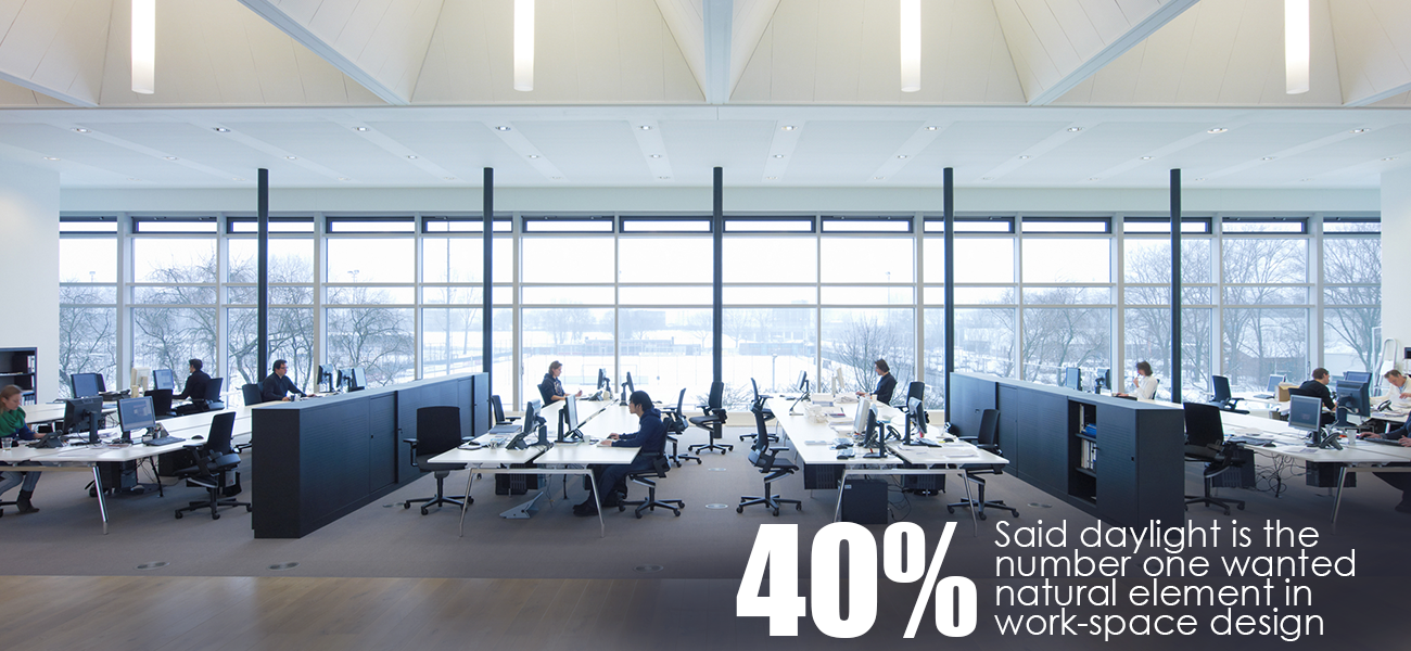 Importance Of Natural Light In The Workplace